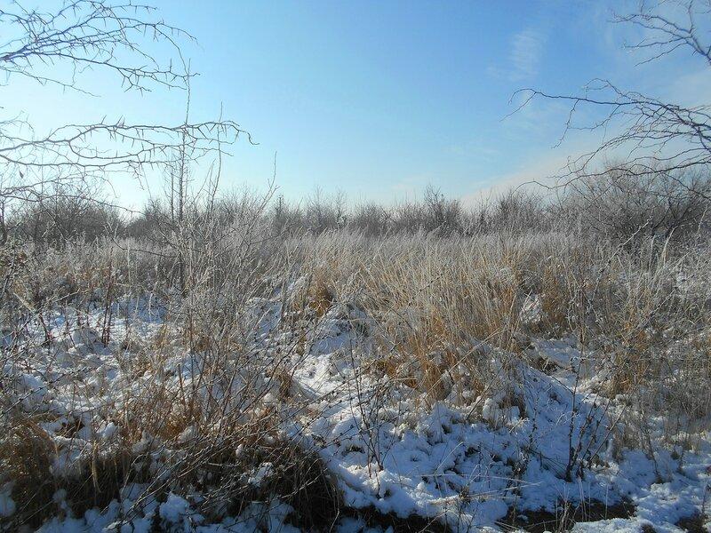 Начало Зимы, в походе, Природы снежное убранство ... DSCN0358.JPG