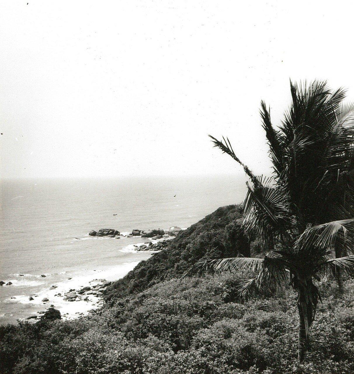 Гвинейский залив. Скала покрытая тропическим лесом