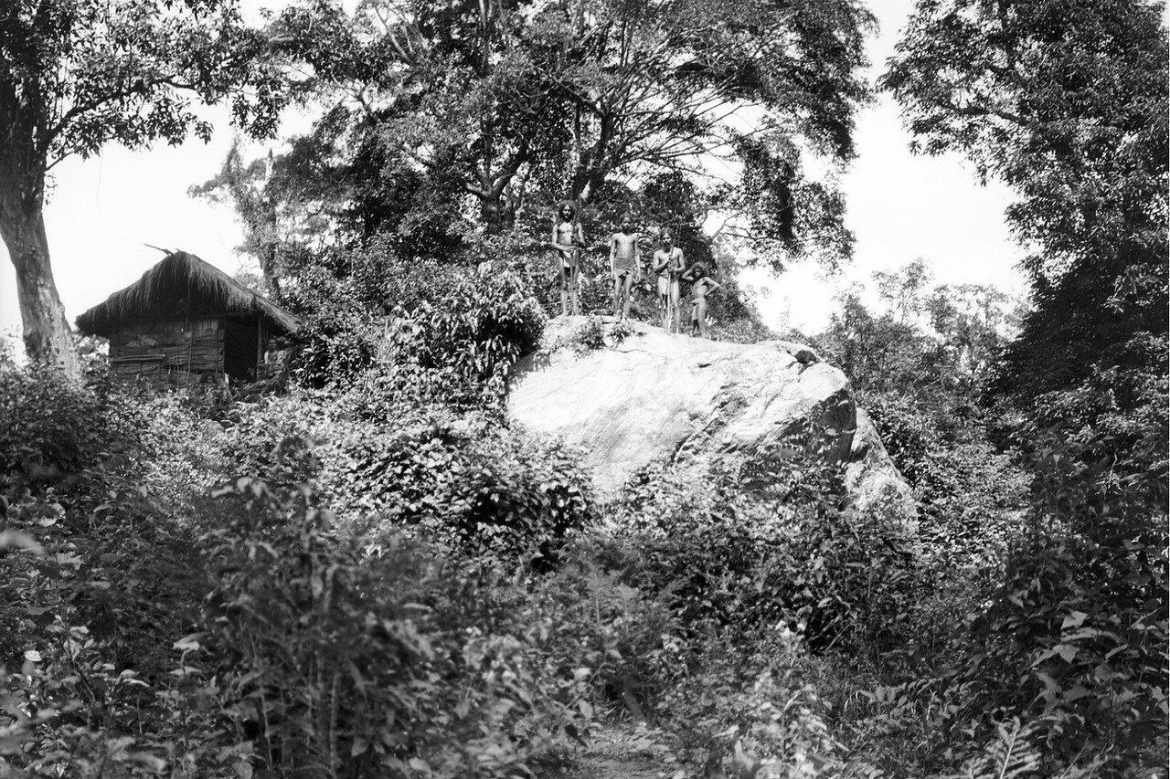 119. Хенебедде. Камень возле дома веддов