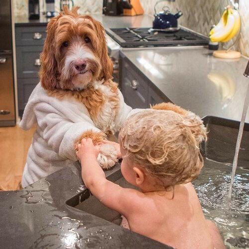 Мальчик и его собака - стильные друзья