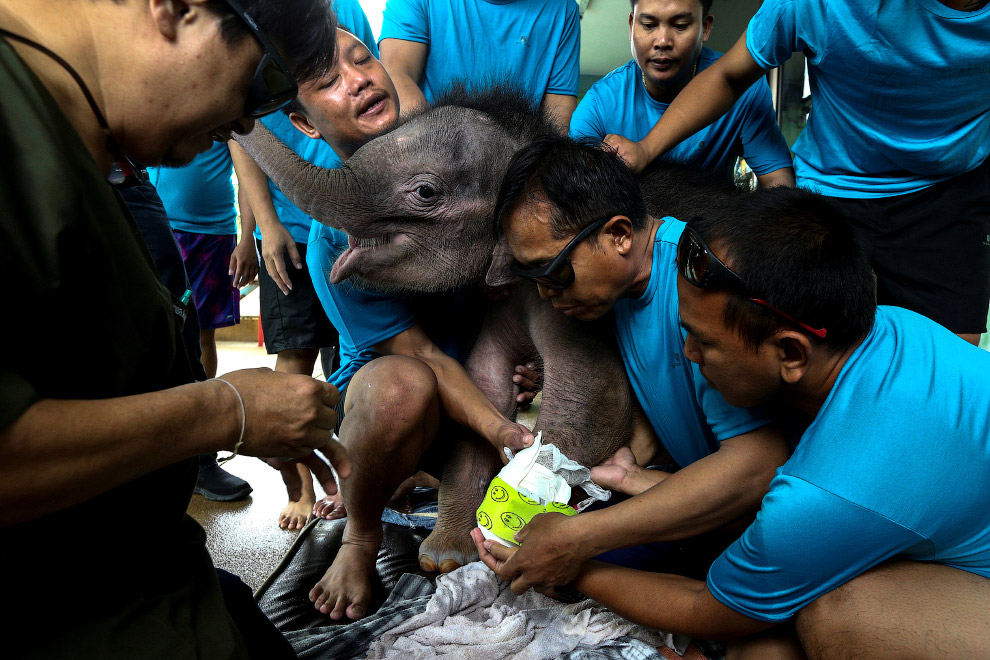 10. Но главная программа в курсе реабилитации — гидротерапия. Приехали. (Фото Athit Perawongmet
