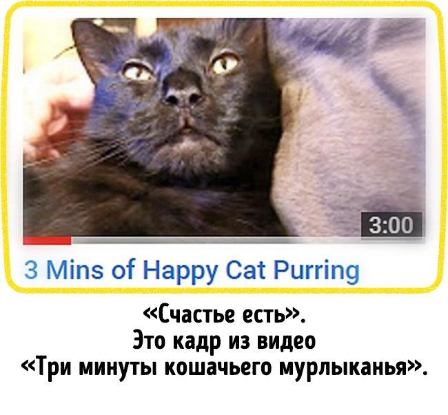 © YouTube  © YouTube   9.