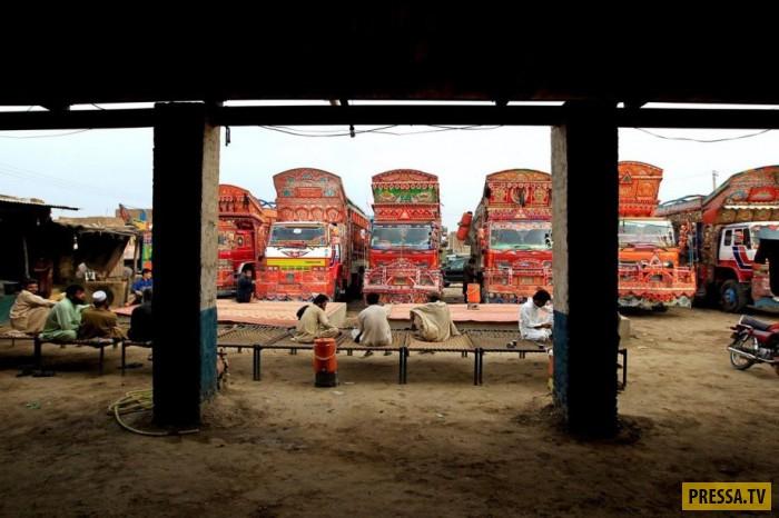«Арт грузовики» Пакистана (16 фото)