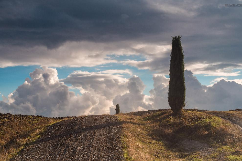 Выходит вечернее солнце и длинные тени кипарисов ложатся на вспаханное поле. То, что плоды труд