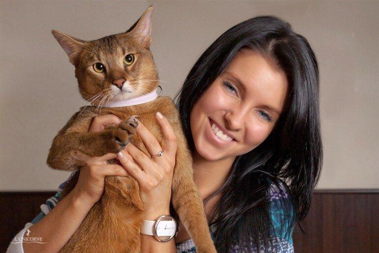 Домашний камышовый кот великолепен! И очень хорош для содержания в квартире