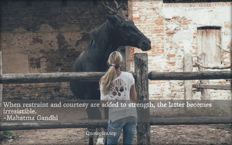 When restraint and courtesy are added to strength, the latter becomes irresistible. ~Mahatma Gandhi