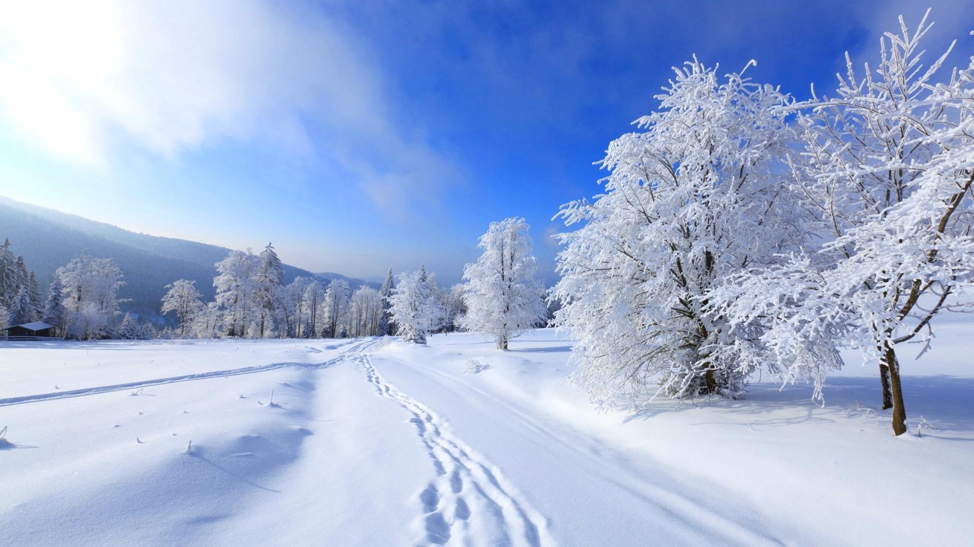 картинки для рабочего стола вот и зима разобраться простой