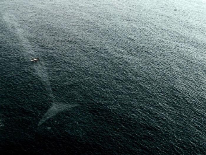 4. Почему я боюсь океана
