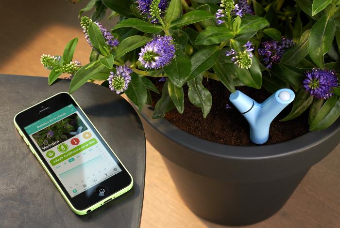 Parrot Flower Power – устройство, которое позаботится о домашних растениях. Новое устройство-т