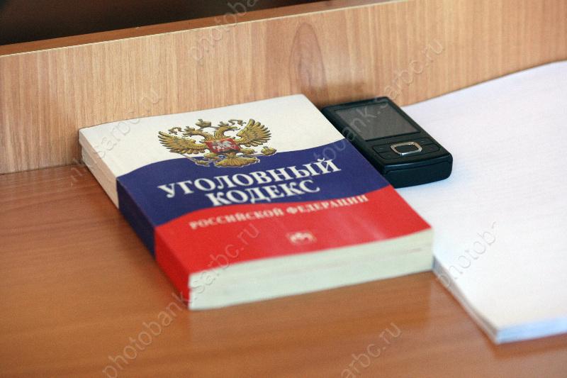 Пушкиных приговорили к восемнадцати и24-м годам тюрьмы заубийство ребенка