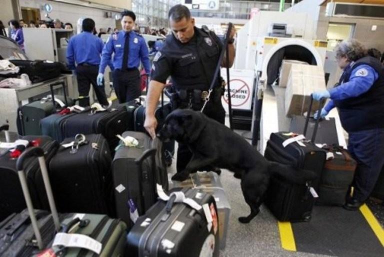 В русском аэропорту отыскали противотанковую мину