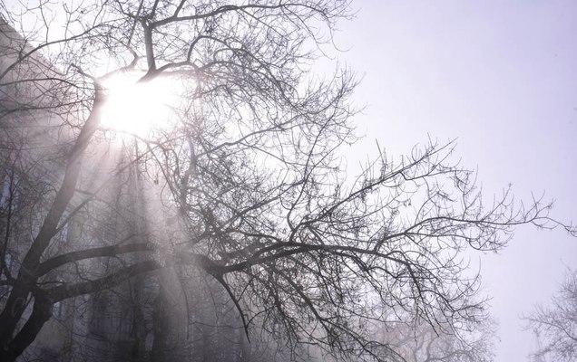 Теплая погода сменится мокрым снегом 13марта— Гидрометцентр