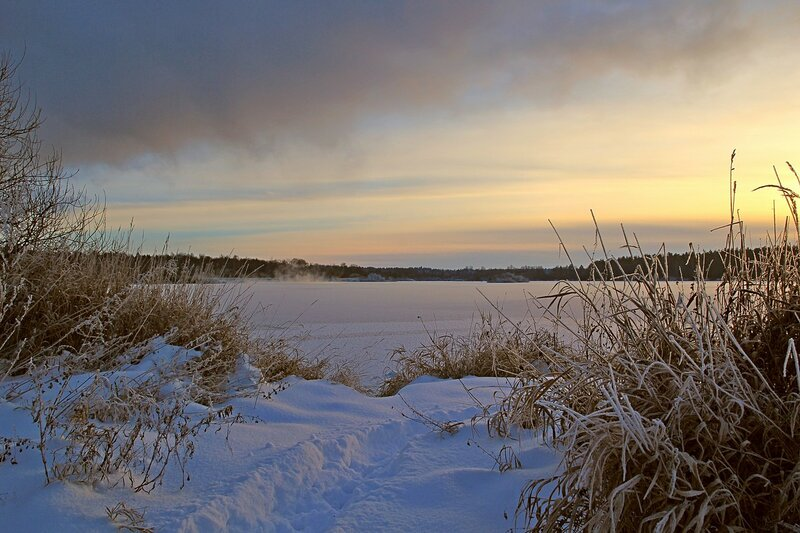 Зимний пейзаж озера Жуково (Кирово-Чепецк): закатное солнце, прибрежный сухостой и покрытая льдом водяная гладь
