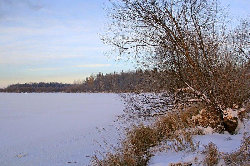 Зимний пейзаж озера Жуково (Кирово-Чепецк): освещенные красным закатным солнцем ветки ив на берегу покрытого льдом озера
