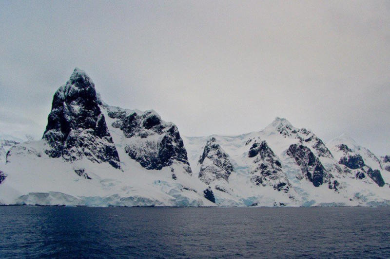 The harsh climate and rough terrain have afforded a level of protection to Antarcticas native specie