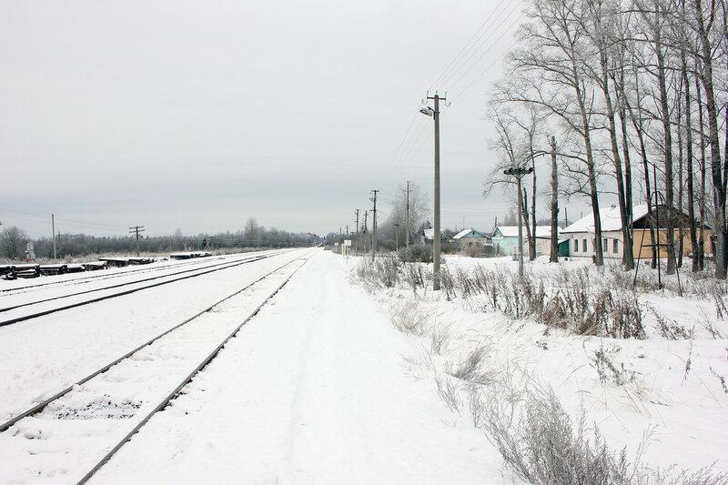 Платформа на станции Осуга, вид на Ржев