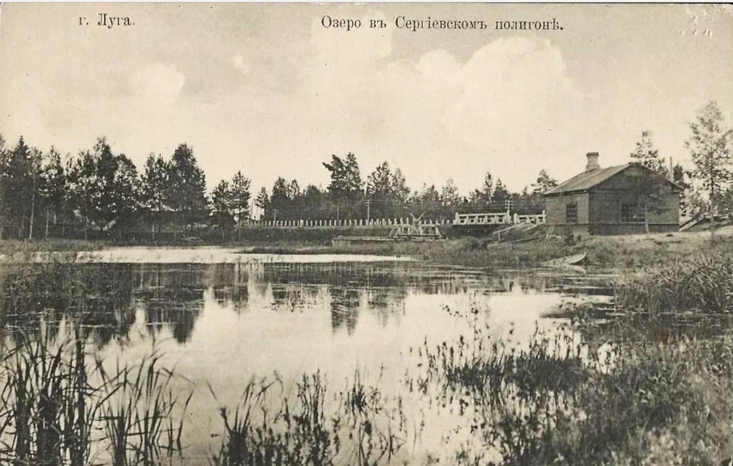 Окрестности Луги. Озеро в Сергиевском полигоне