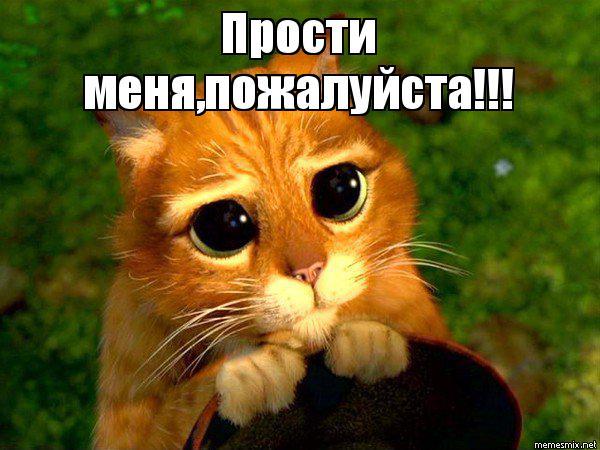 Прости меня, пожалуйста! Кот с огромными глазами открытки фото рисунки картинки поздравления