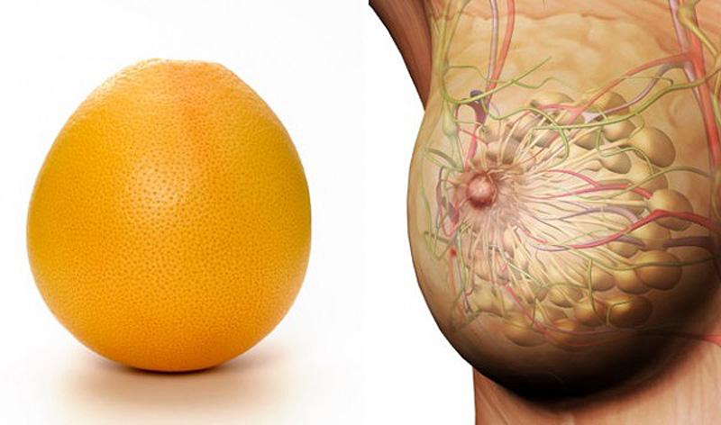 6. Грейпфрут — грудь Сходство с женской грудью круглых цитрусовых вроде лимонов и грейпфрутов может