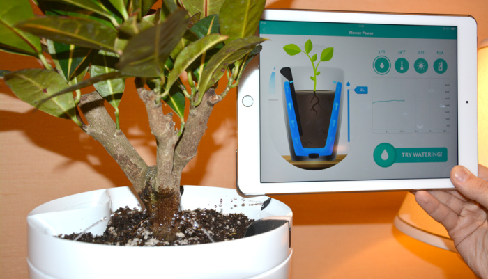 Parrot Pot – забота о растениях. Вы настоящий