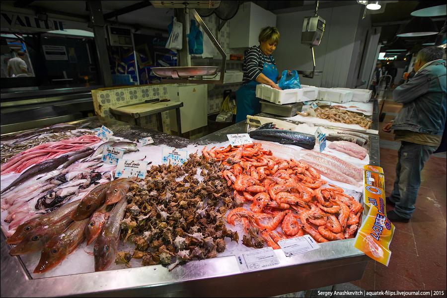 13. Рыбный рай для тех, кто влюблен в средиземноморскую кухню.