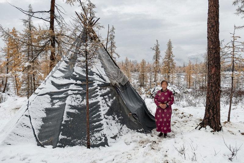 Пурев — женщина-оленевод и глава семьи — стоит рядом с традиционным семейным жилищем цаатанов по