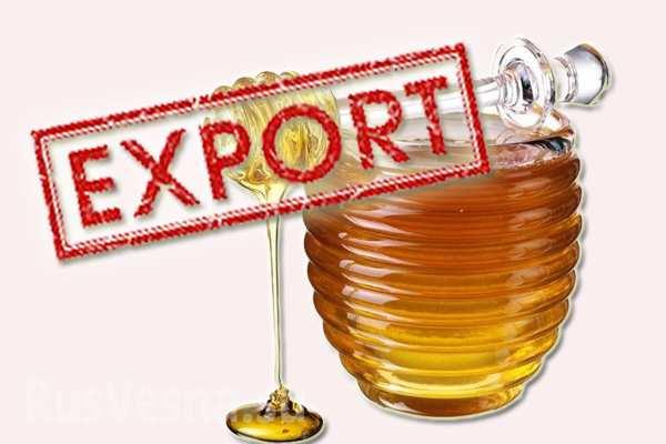 В нынешнем году экспортеры украинского меда вЕвропу заплатят пошлину— Минагрополитики