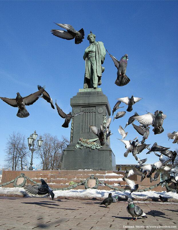 50А. Пушкин. 08.03.11.05...jpg