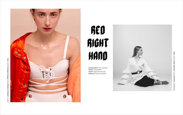 DESIGN SCENE STYLE: Red Right Hand by Ania Cywinska