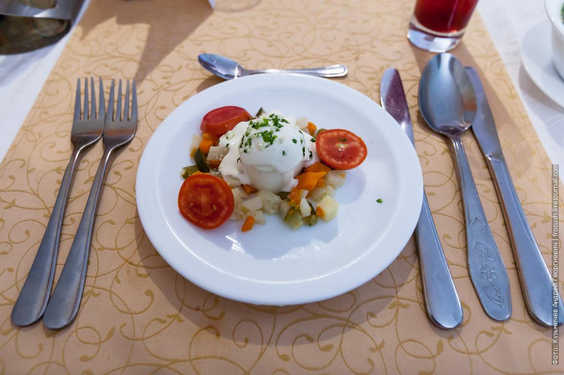 Яйцо под майонезом с гарниром