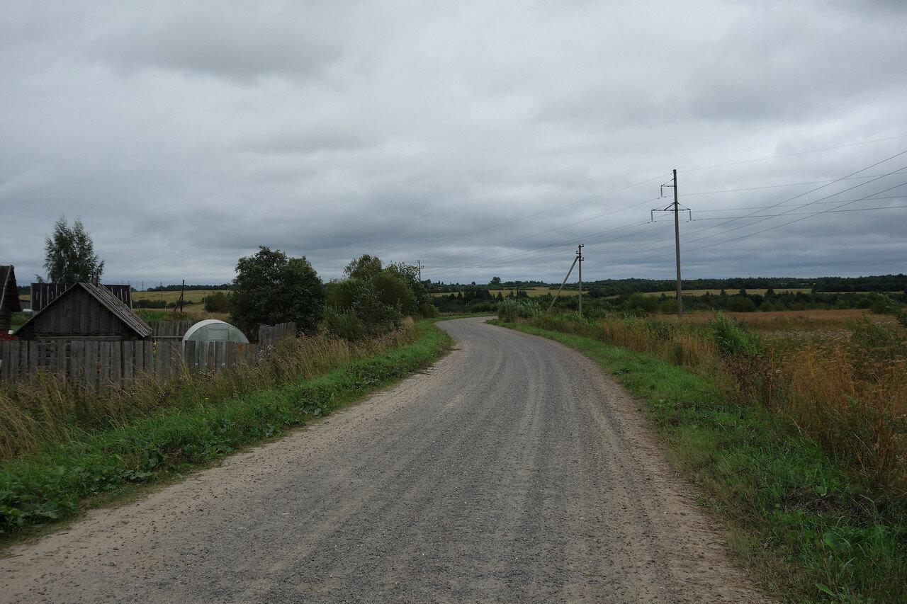 дорога-щебенка и сочные луга