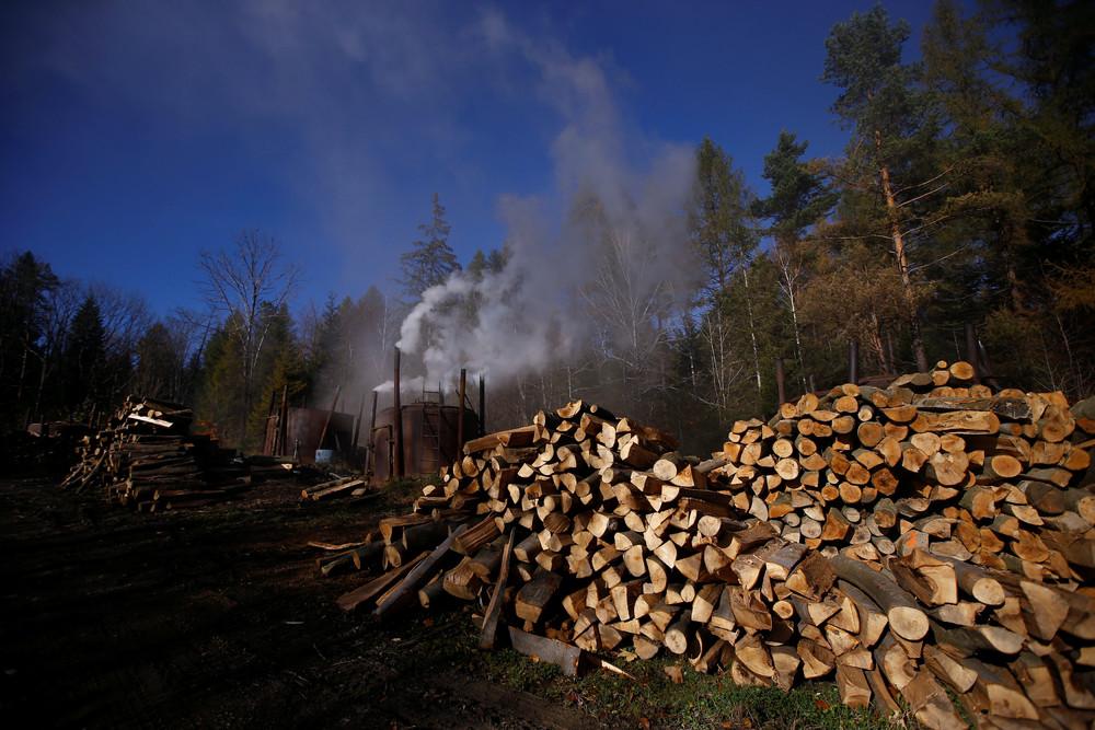 Производство древесного угля в горном лесу Польши