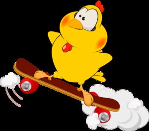 птичка на скейте