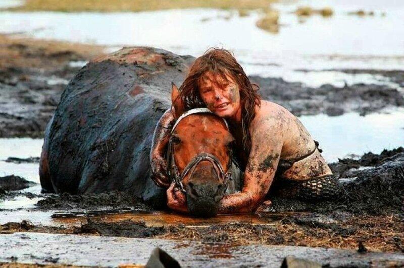 Любить   это значит действовать! Фото, как люди спасают животных