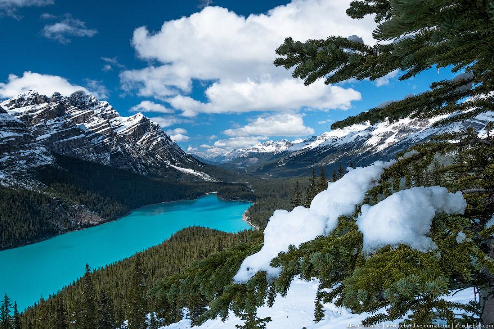 34. Columbia Icefield. Ледник Athabasca — самый легко-доступный ледник в мире, от автомобильной