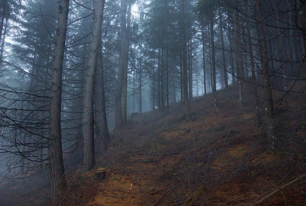 13. В Одуванчиковой долине находится замечательная деревушка — Санта Магдалена . После недолгих
