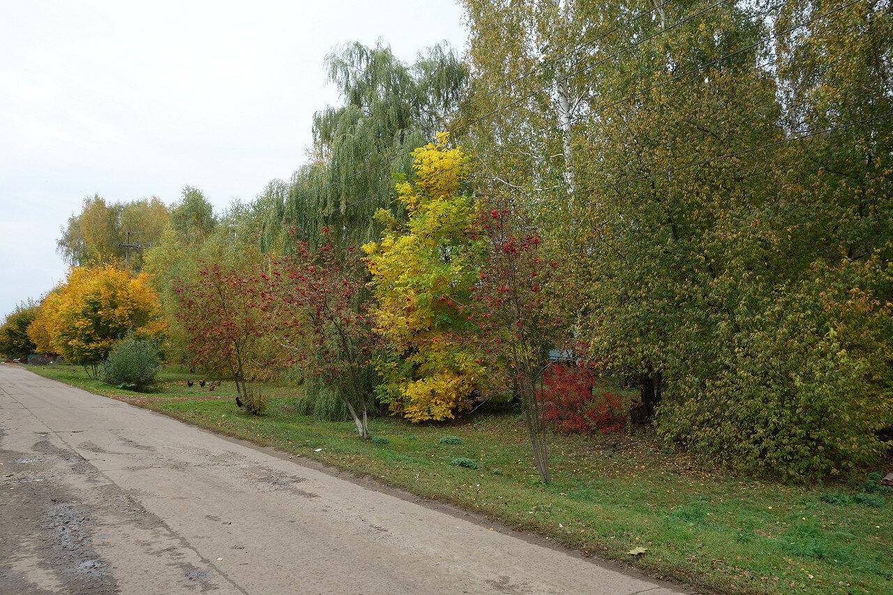 осень, село Знаменское