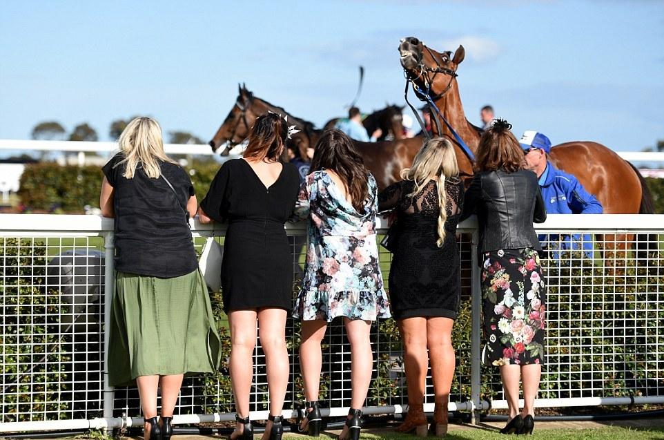 Гламурные любители скачек Australian Geelong Cup
