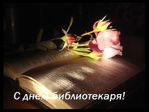 27 мая С днем библиотекаря! Розовая роза на книге