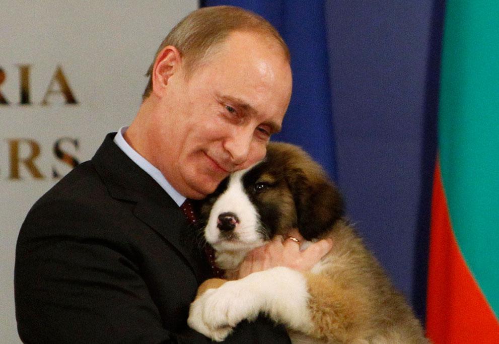 5. Путин и щеночек. Путин со щенком каракачанской овчарки, которого ему подарил премьер-министр Болг