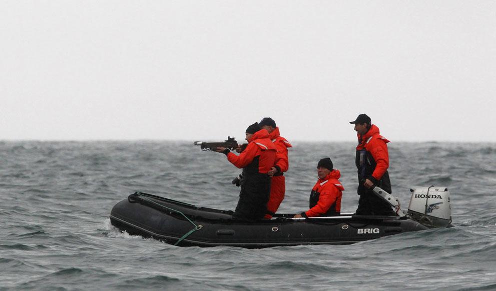 14. Путин и кит, которого не видно. Владимир Путин целится в кита из арбалета, чтобы получить кусоче