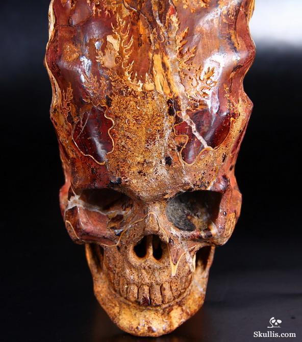 Когда прекрасно выглядишь и в 140 млн. лет