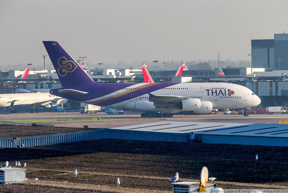 8. У Emirates самая большая коллекция больших «Арбузов» — 94 штуки и еще почти 50 заказано.