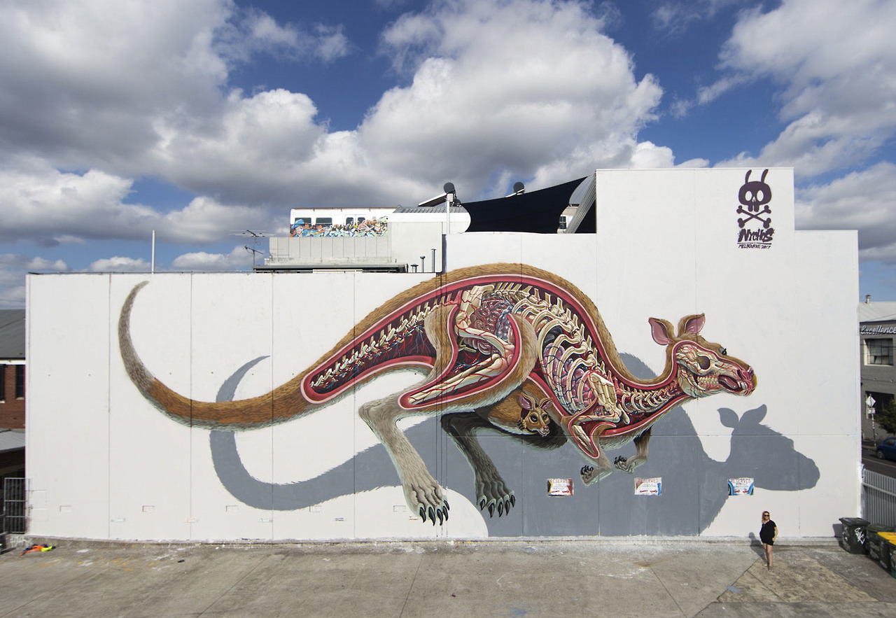 Anatomical Murals of Bisected Animals by Street Artist Nychos (7 pics)