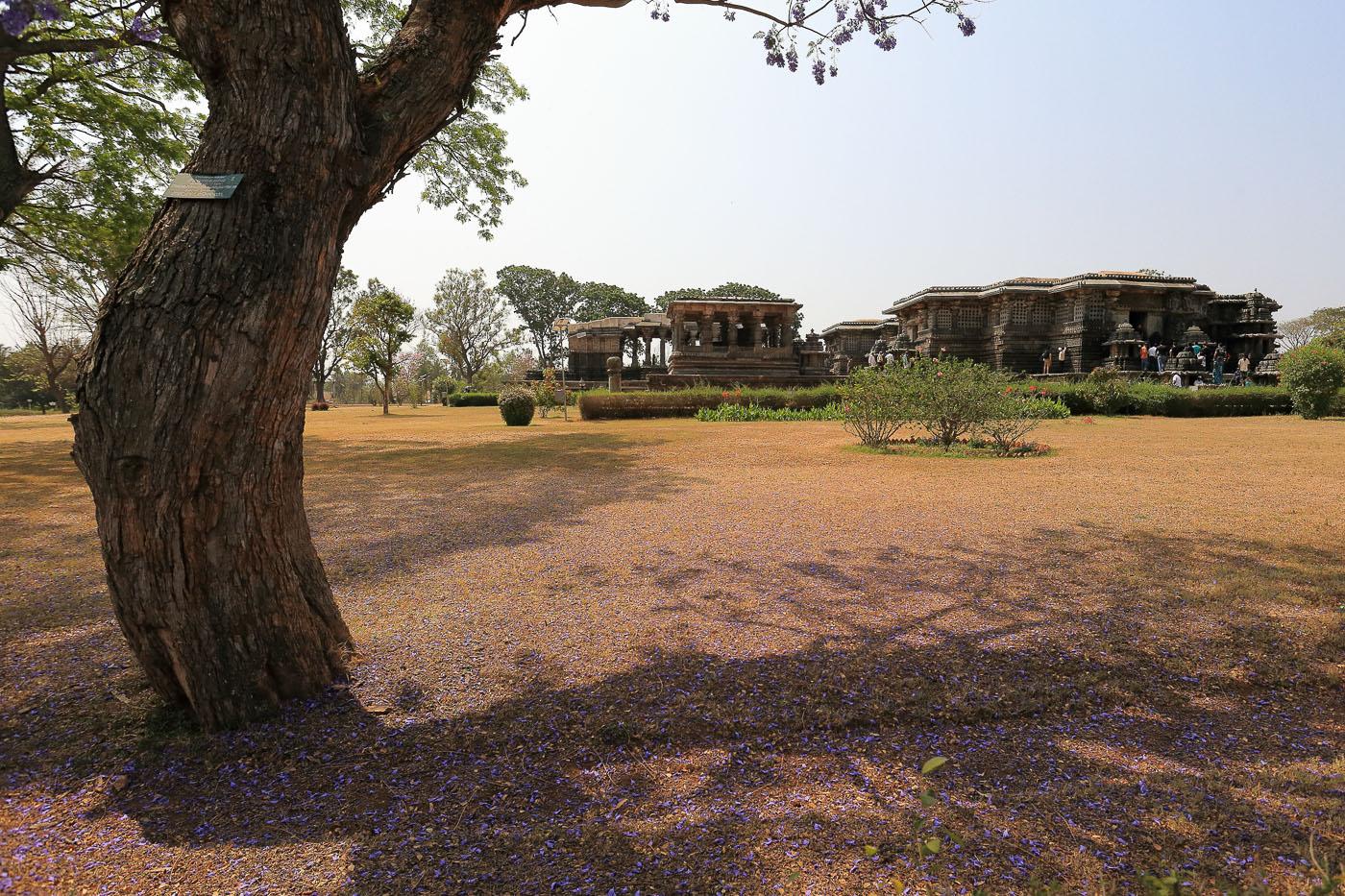 Фотография №2. Храм Hoysaleshwara Temple в городе Халебид. Один из фасадов от фиалкового дерева. Отзывы об отдыхе в Индии в штате Карнатака. Камера Canon EOS 6D, объектив Canon 17-40, параметры съемки: 1/1000, 0 eV, f 6.3, 17 mm, ISO 640