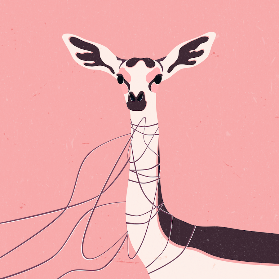 Beautiful and Touching Animals Illustrations