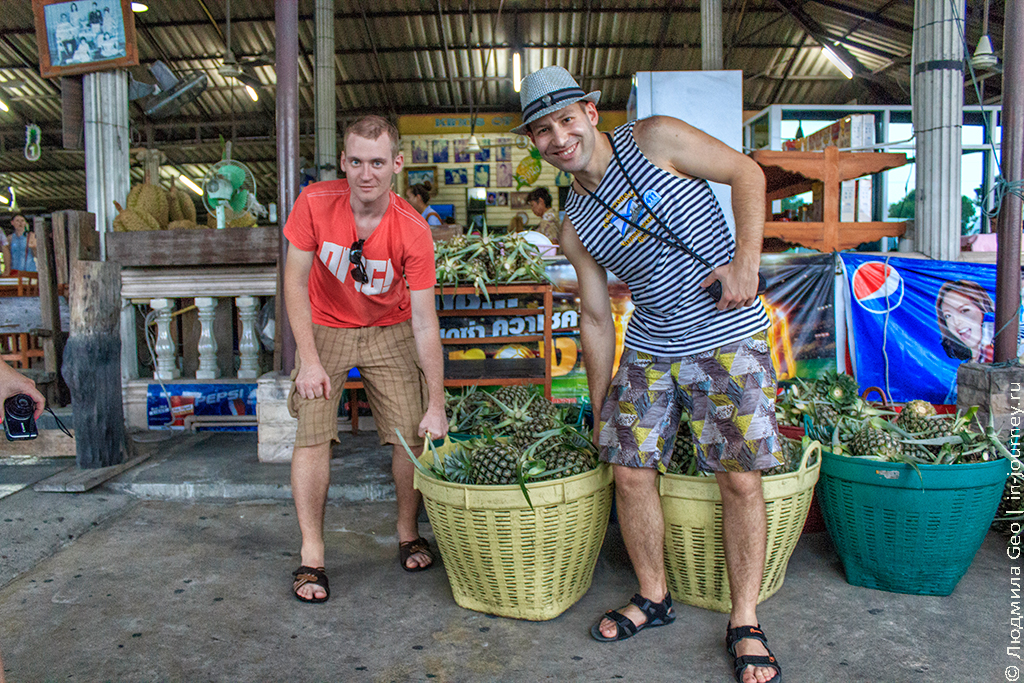 ананасовая плантация таиланд