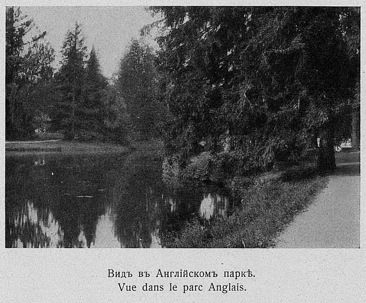 Вид в Английском парке у Берёзового домика