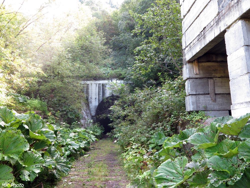 Западный портал тоннеля 9