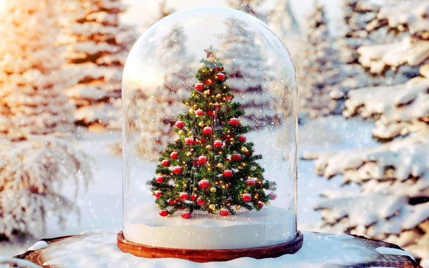 новогодняя ёлка, новый год, праздник, подарки, украшения